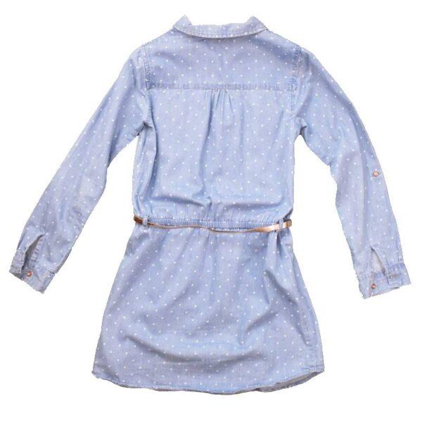 Sinine kleit tagant (2)