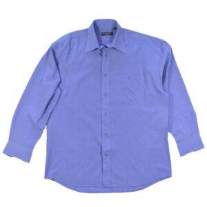 Sinine triiksärk (1)